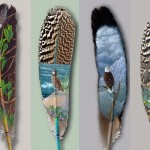 paintedfeather_01